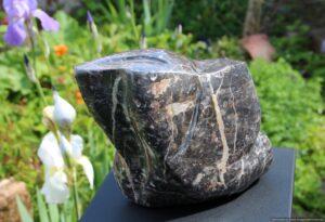 Les yeux. Calcaire noir de Laurens (Hérault, France). 2020